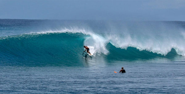 Lets join with Mentawai blue to enjoy surf